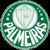 Palmeiras (21)