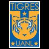 Tigres (11)